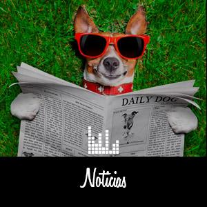noticias_rs
